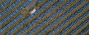Jinko Solar Panels - aerial shot of rows of solar panels